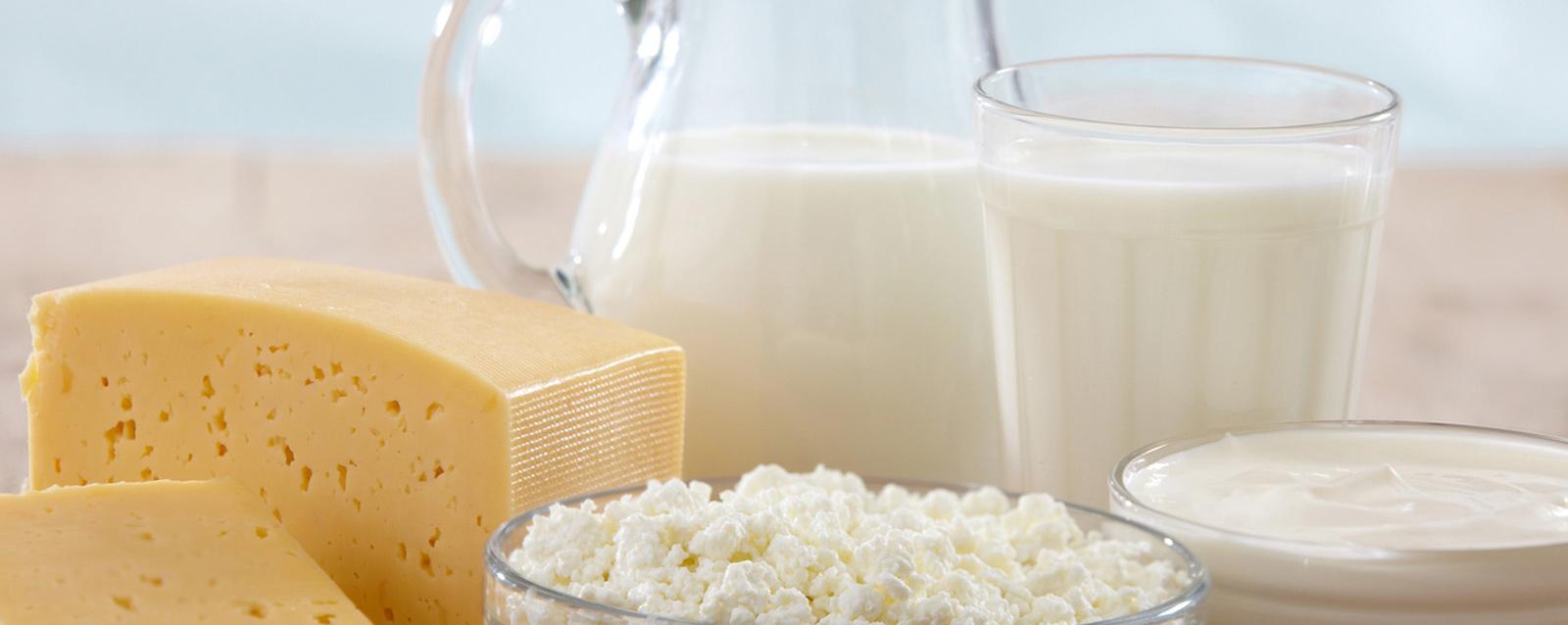 From Milk to Cheese, Yogurt to Ice Cream,